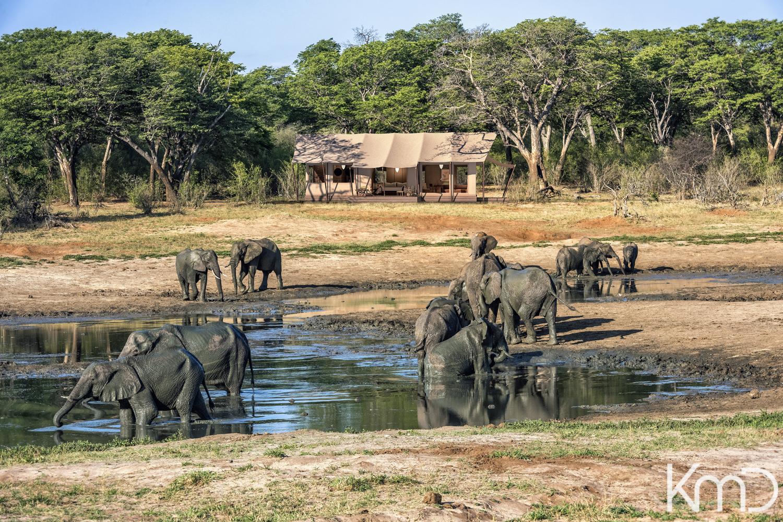 3D-Rendering-Tented-Bush-Camp-Botswana-4